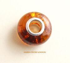 Amber & 925 Silver Charm Fit ALL European/Danish Charm Bracelets – CHA71RRP£40!!