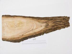 Waney edge English Ash wood board. Plank plaque chopping. 280 x 720 x 24mm. 4614