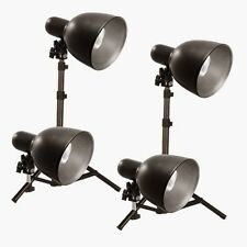 Photography Table Top Light Kit 1300Watts Steve Kaeser Photographic Lighting