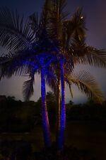 Sparkle Magic Illuminator Outdoor Laser Light - Blue (Indigo Twilight 4.0 Series