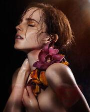 Emma Watson Celebrity Actress 8X10 GLOSSY PHOTO PICTURE IMAGE ew59