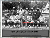 Negro Baseball 1914 Chicago American Giants Team Picture 8 X 10 Photo Picture