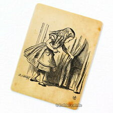 Alice in Wonderland Deco Magnet, Tiny Door Decorative Fridge Decor Mini Gift