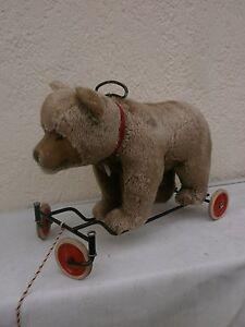 antique steiff bear on wheals 1950-1960