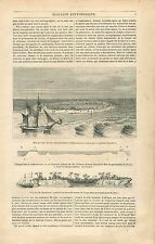 Îles Madréporiques Madrépores Caryophyllie Meandrina Astrée GRAVURE PRINT 1838
