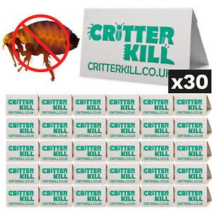 FLEA KILLER TRAP TRAPS GLUE SPRAY GEL POWDER X30 PEST CONTROL PRO PRODUCT