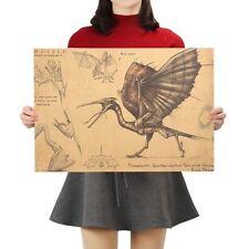 Fulgsaurier Dino Poster Pterosaurier Wissenschaft Museum Wandbild Lehrtafel Bild