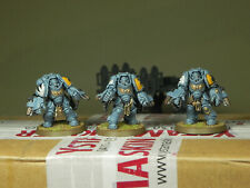 Warhammer 40000 Space Wolves Primaris Aggressors Pro Painted