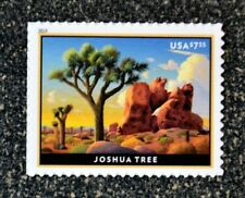 2019USA $7.35 Joshua Tree - Priority Mail  -  Mint  NH