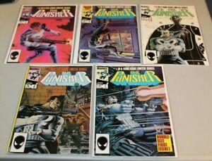 Complete Set Punisher 1 2 3 4 5  NM HIGH GRADE Zeck Limited Series 1st prints