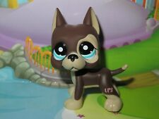 *Petshop Chien Dogue Argentin * Pet shop Danois Great Dane Dog * #817 bis