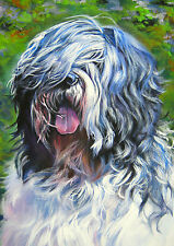 Lowland Sheep Dog A4 Print on quality canvas photo paper