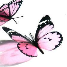 100 Pack Butterflies - Candy Pink - 5 to 6 cm - Topper, Weddings, Crafts, Cards