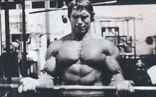 24X32 Inch Arnold Schwarzenegger Body building Work out Poster Art X002
