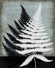 Woodland Moderne III Mauro Cardoza Art Print 16x20