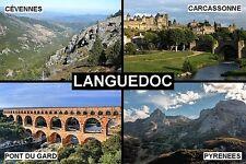 SOUVENIR FRIDGE MAGNET of LANGUEDOC FRANCE CARCASSONNE PYRENEES PONT DU GARD