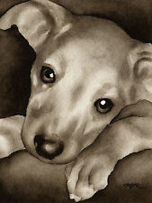 GREYHOUND PUPPY Watercolor ART Print Signed by Artist DJR