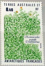 Taaf FSAT 1990 Maury 157 266 plantes de l'Antarctique plants flore singe MNH