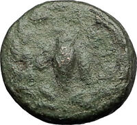 EPHESOS in IONIA 280BC Authentic Ancient Greek Coin BEE Stag & Quiver i60547