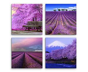 Wandbilder 4x30x30cm Leinwandbild auf Keilrahmen Lavendel Feld Lila Bilder Deko
