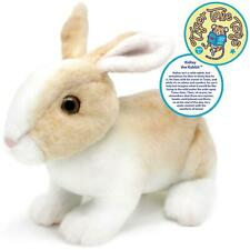 Ridley the Rabbit | 11 Inch Realistic Stuffed Animal Plush Bunny