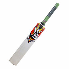 Kids Kashmir Willow Bat Jr Size 4