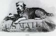Repro Postcard: Owney the USPS Dog on a Bag of Mail