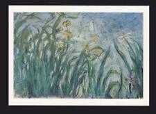 Claude Monet Yellow and Mauve Irises POSTCARD / Card of the Art Artwork