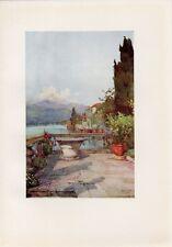 Stampa antica TERRAZZO di un giardino AFFACCIATO sul LAGO D' ORTA 1905 Old Print
