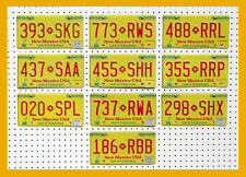 10 NEW MEXICO ZIA SUN YELLOW License Plates Tag Art Craft GENERIC BULK LOT
