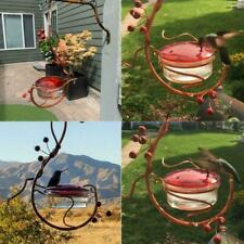 Red Berries Hummingbird Feeder Courtyard Bird Drinking Feeding Outdoor Garden