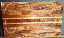 Ambrosia Spalted Maple Wood #7489 Luthier Electric Guitar Body 22 x 14 x 1 3/4