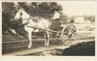 Young Woman in Enormous Hat with Horse & Wagon Vintage Real Photo Postcard