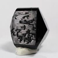 348.00ct Black Tourmaline Crystal Floater Gem Mineral Etched Floater