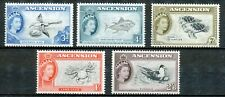 ASCENSION ISLAND 1956 - 5 FAUNA STAMPS (Birds / Marine life)  MNH          Hk79e