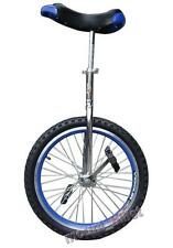 """New! In & Out Door Chrome colored  20"""" Unicycle Cycling"""