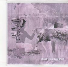 (DL900) Cheek Mountain Thief, Cheek Mountain - 2012 DJ CD