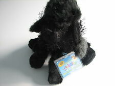 NEW with Code GANZ Webkinz HM191 Black Poodle Plush Toy Dog Puppy NWT tags unuse