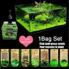 10g / Tasche Aquarium Pflanze Samen Wasser Gras Foreground Einfach  Q