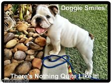 Funny Dog Humor French Bulldog Doggie Smiles Refrigerator Magnet