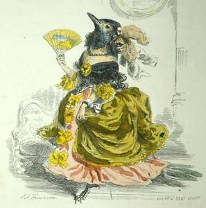 Bird La Bridesmaid Pie engraving Original Of Animals Of Grandville 1842