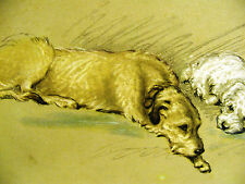 Lucy Dawson Book Cover WOLFHOUND and SEALYHAM (3) 1946 Vintage Dog Print Matted