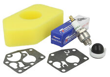 Service Kit Fits BRIGGS & STRATTON Classic, Sprint Engines