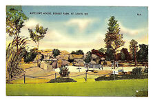 Old ST LOUIS MO ZOO Linen Postcard ANTELOPE MO MISSOURI