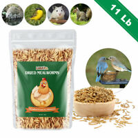 11 LBS Bulk Dried Mealworms NON GMO Food Wild Blue Birds Chickens Hen Treats USA