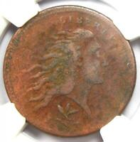 1793 Flowing Hair Wreath Cent 1C (Vine Bars Edge) - NGC VF Details - Rare Coin!