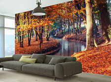 Bridge Over River Autumn Time Wall Mural Photo Wallpaper GIANT WALL DECOR