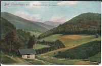 Ansichtskarte Bad Lauterberg im Harz - Wiesenbektal mit Ravenskopf - 1910 (!)