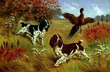 """English Springer Spaniel Dogs (2 Colors)w Pheasant.16"""" Fabric Panel-Sew.Pic8x11"""""""