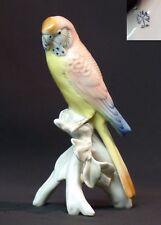 19èm porcelaine Saxe KARL ENS jolie perruche 18cm225g perroquet rose meissen